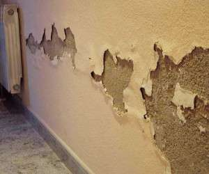 راهنمای کامل رفع نم دیوار خانه